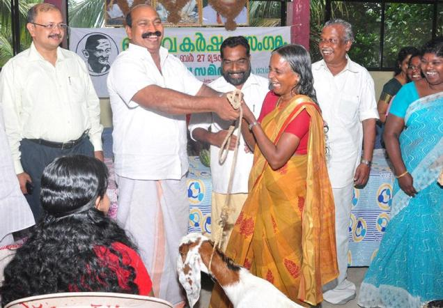 Lalitha of Panancode, who won the first prize in organic farming contest, being presented with a goat at the farmers' meet held in Thiruvananthapuram. Special arrangement
