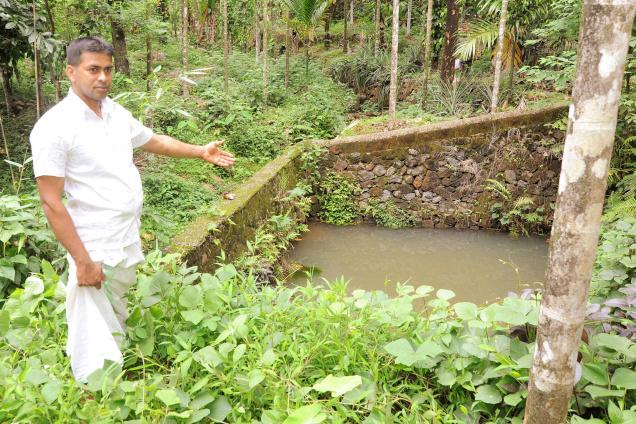 HIGHLIGHT: Several inward sloping terraces have been constructed in the farm to conserve water. / by Special Arrangement / The Hindu